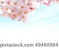 벚꽃 02 49460964