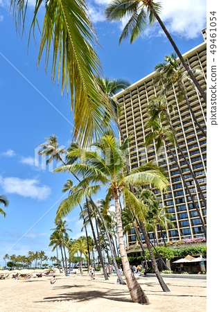 하와이 휴가 49461054