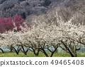 Shinshu Nagano Prefecture Nagano City Shinshu Shincho Rokko Meien and Kamogawa 49465408