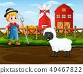 농부, 양, 외양간 49467822