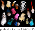 Collection of different color feathers. 49475635