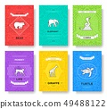 animal thin line brochure cards set 49488122