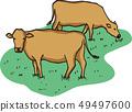 一頭牛 49497600