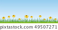 summer meadow with yellow flowers banner with copy space 49507271