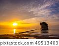 Mitsushima 49513403