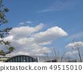 春天藍天和白色雲彩 49515010