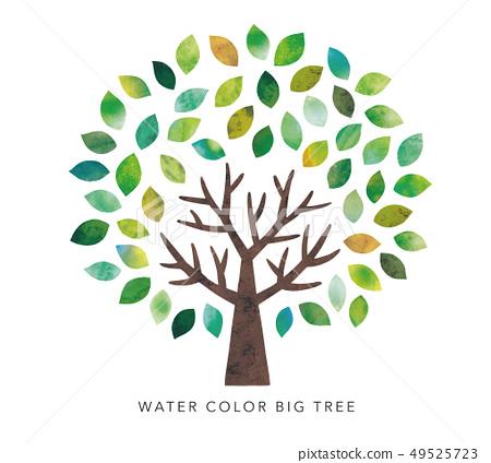 水彩的大樹 49525723