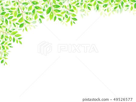 배경 소재 _ 나뭇잎 49526577