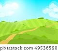 Cartoon Summer Green Field and Road. Vector 49536590