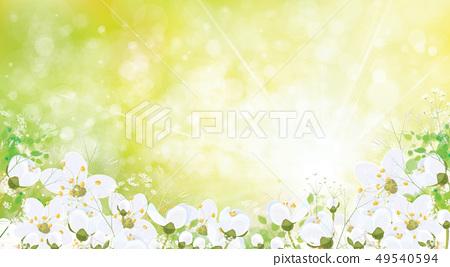 Vector spring floral background. 49540594