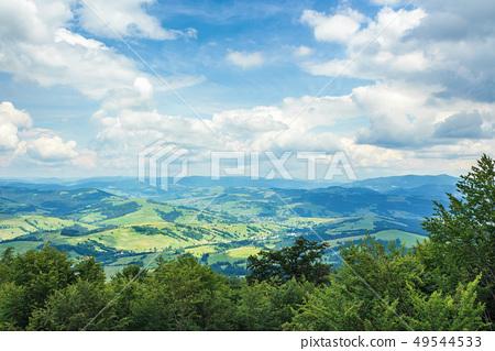 beautiful mountain landscape in summer 49544533
