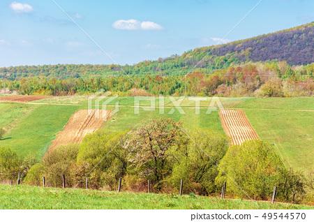 mountainous countryside in springtime 49544570