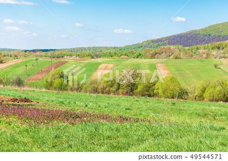 mountainous countryside in springtime 49544571