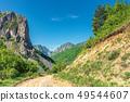 springtime in alba country, romania 49544607