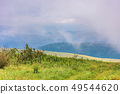 alpine meadow on a cloudy day 49544620