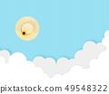 Straw Hat 49548322