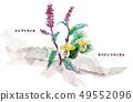 난부 토라노오와 키바 나노 코마 노 손톱 (早池峰山) 49552096