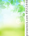 新綠色淺綠色的背景 49553448