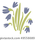 Spring violet or Purple vector crocuses on white. Floral nature doodle illustration crocus flower 49556689