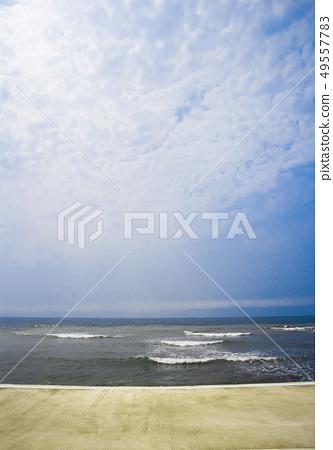 海邊小徑 49557783