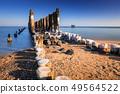 Frozen wooden breakwaters line at Baltic Sea 49564522