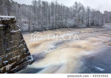 Wild Morrum river in snowy winter, Sweden 49564988