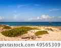 Beautiful Caribbean Sea beach in Playa del Carmen 49565309