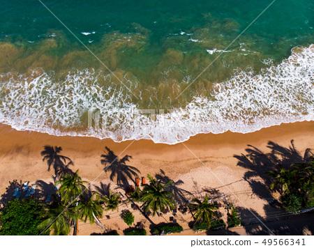 Tangalle tropical beach in Sri Lanka aerial view 49566341