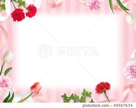 배경 - 카네이션 - 어머니 날 - 핑크 조치 스트라이프 - 프레임 49567634