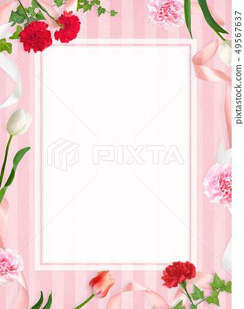 배경 - 카네이션 - 어머니 날 - 핑크 조치 스트라이프 - 프레임 49567637