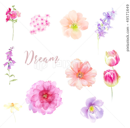 用柔和的顏色畫出的花的水彩畫 49571649