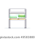 modern indoor garden digital greenhouse electronic terrarium farm glass container eco farming house 49583880