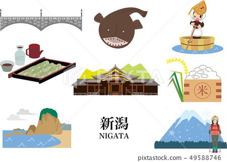 Niigata 49588746