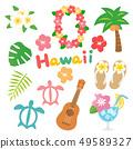 하와이의 귀여운 일러스트 세트 49589327