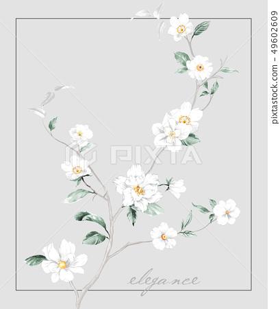 清新水彩手繪花卉 49602609