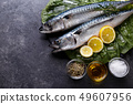 Raw Mackerel fish 49607956