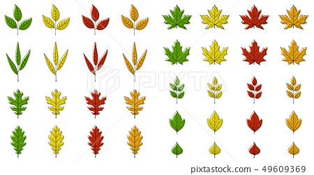 Autumn leaves set 49609369