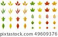 Autumn leaves set 49609376