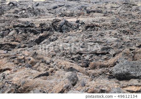 하와이 용암 바위 49612134