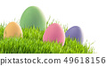Easter eggs in green grass isolated 49618156