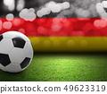 Soccer ball on the soccer field 49623319
