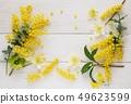Natural Mimosa petals, frame material 49623599