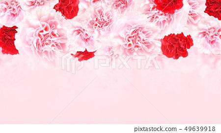 背景 - 玫瑰 - 康乃馨 - 粉紅色 - 母親節 49639918