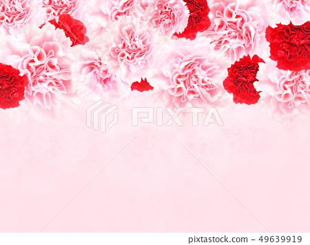 背景 - 玫瑰 - 康乃馨 - 粉紅色 - 母親節 49639919
