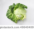 Spring cabbage 49640409