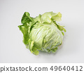 Spring cabbage 49640412