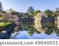 Aichi Prefecture Nagoya Castle Sakura 49640655