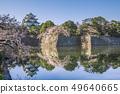 Aichi Prefecture Nagoya Castle Sakura 49640665