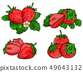 Set of strawberry fruit isolated on white. 49643132