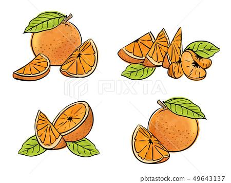 Set of orange fruit isolated on white. 49643137